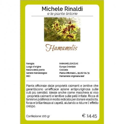 Hamamelis - Michele Rinaldi